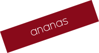 ananas_hover